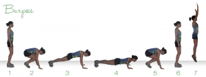 Burpees - A great way to burn calories